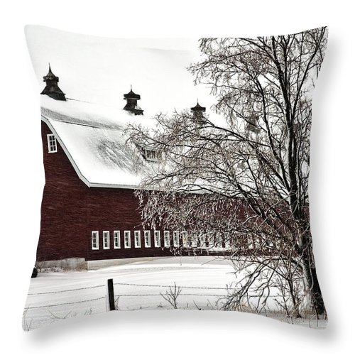 Barn Throw Pillow featuring the photograph Snowy Red Barn by Edward Peterson