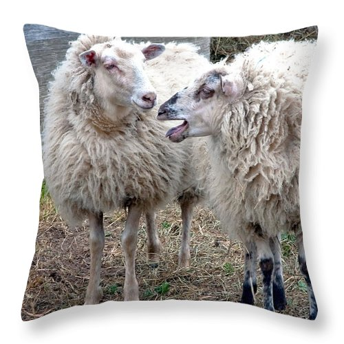 Sheep Throw Pillow featuring the photograph So I Said by Burney Lieberman