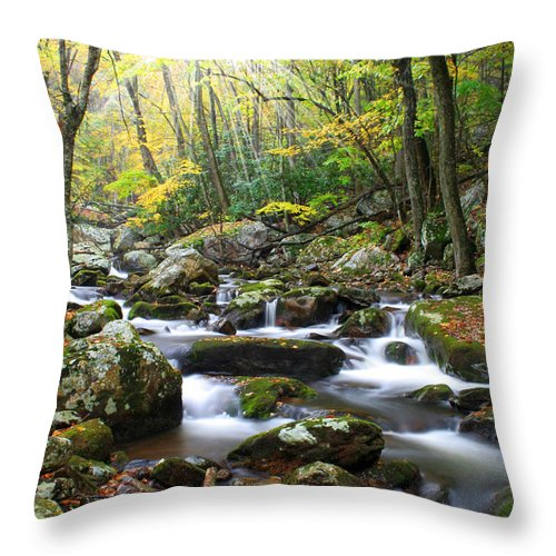 Beautiful Throw Pillow featuring the photograph So Softly by Darren Fisher