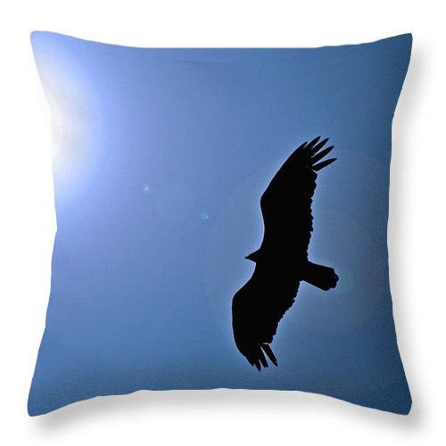 Turkey Vulture Throw Pillow featuring the photograph Soaring Free by Mary Anne Williams