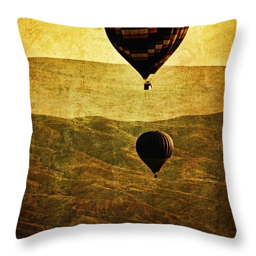 Hot Throw Pillow featuring the photograph Soaring Heights by Andrew Paranavitana