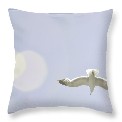 Art Photography Throw Pillow featuring the photograph Soaring Seagulls by Blake Richards