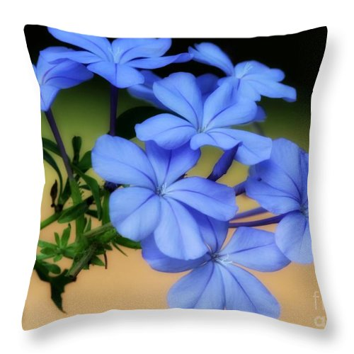 Blue Throw Pillow featuring the photograph Soft Blue Plumbago by Sabrina L Ryan