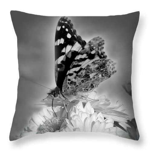 Soft Throw Pillow featuring the photograph Soft Landing by Nina Fosdick