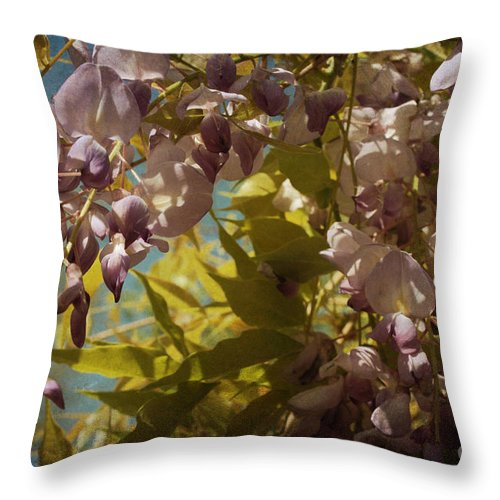 Wisteria Throw Pillow featuring the photograph Soft Pastel Spring by Lisa Porier