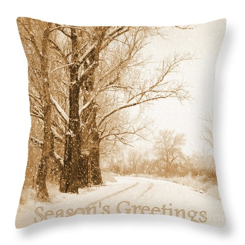 Snowy Holiday Scene Throw Pillow featuring the photograph Soft Sepia Season's Greetings by Carol Groenen