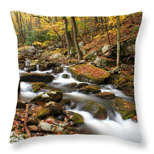 Autumn Throw Pillow featuring the photograph Softly Flowing by Darren Fisher