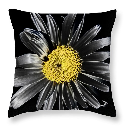 Daisy Throw Pillow featuring the photograph Solarized Daisy by David Patterson