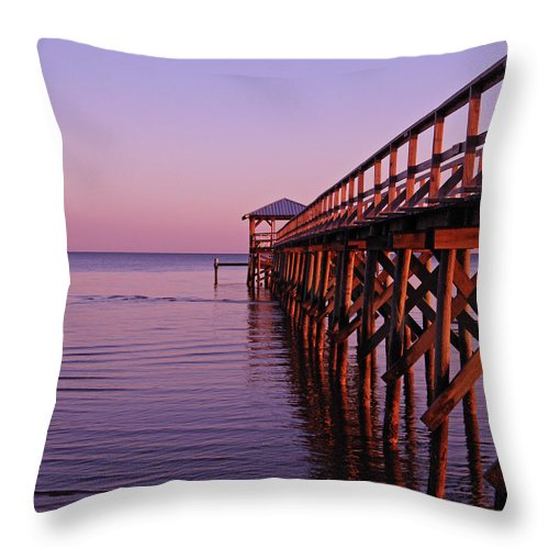 Mississippi Throw Pillow featuring the photograph Solitude by Brian Wright