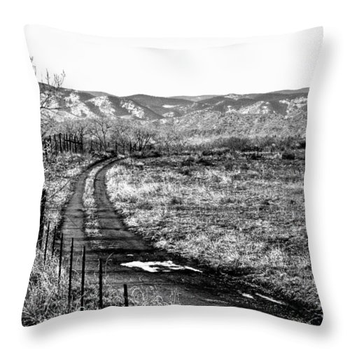 Denver Throw Pillow featuring the photograph South Platte Park II by David Patterson