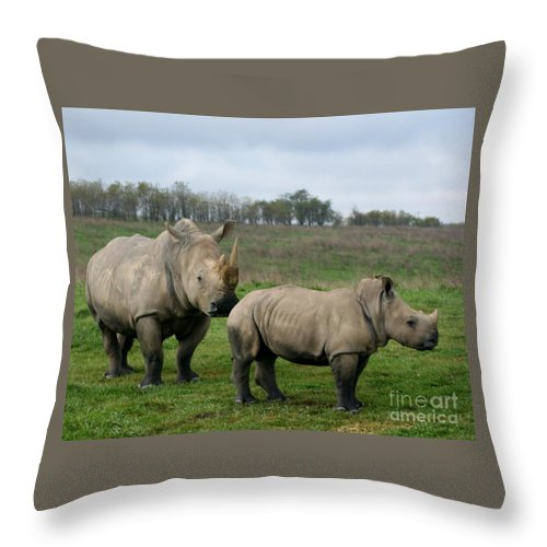 Wildlife Throw Pillow featuring the photograph Southern White Rhinos by Dawn Downour