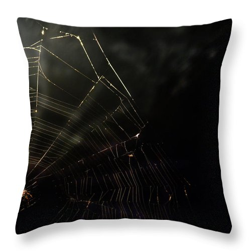 Spider Throw Pillow featuring the photograph Spider by La Dolce Vita