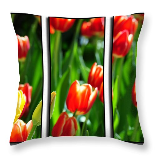 Throw Pillow featuring the photograph Spring Beauty Triptych Series by Michael Frank Jr