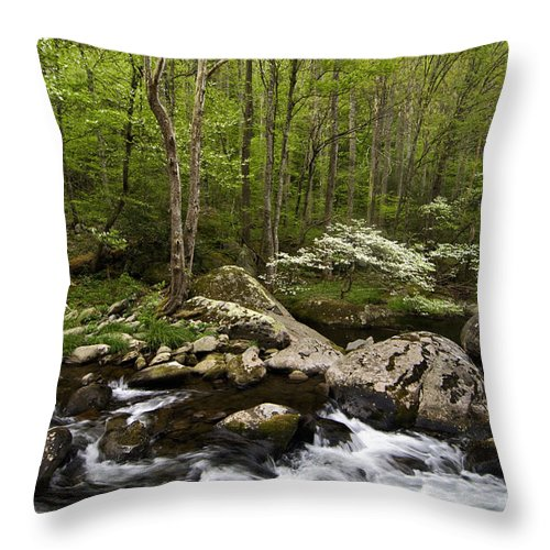 Dogwood Throw Pillow featuring the photograph Spring Dogwoods On The Little River - D003829 by Daniel Dempster
