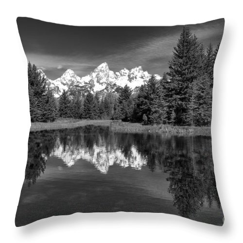 B & W Throw Pillow featuring the photograph Spring In The Tetons by Sandra Bronstein