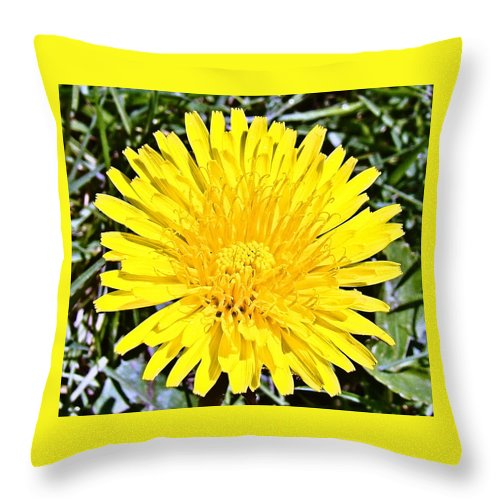 Yellow Throw Pillow featuring the photograph Springtime by Nick Kloepping