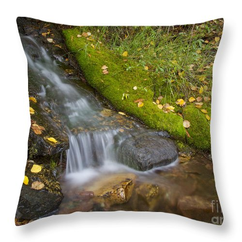 Creek Throw Pillow featuring the photograph Sprinkle Of Autumn by Idaho Scenic Images Linda Lantzy