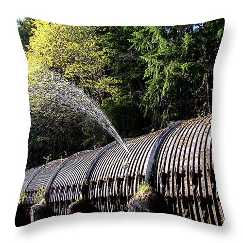 Water Throw Pillow featuring the photograph Sprung A Leak by Nick Kloepping