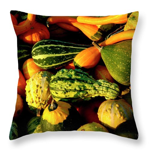 Squash Throw Pillow featuring the photograph Squash In Morning Light by Thomas R Fletcher
