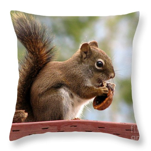 Squirrel Throw Pillow featuring the photograph Squirrel And His Walnut by Leone Lund