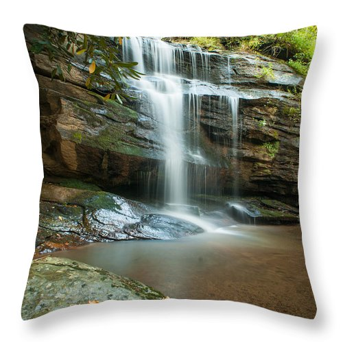 Landscape Throw Pillow featuring the photograph Standing Rock Falls by Joye Ardyn Durham