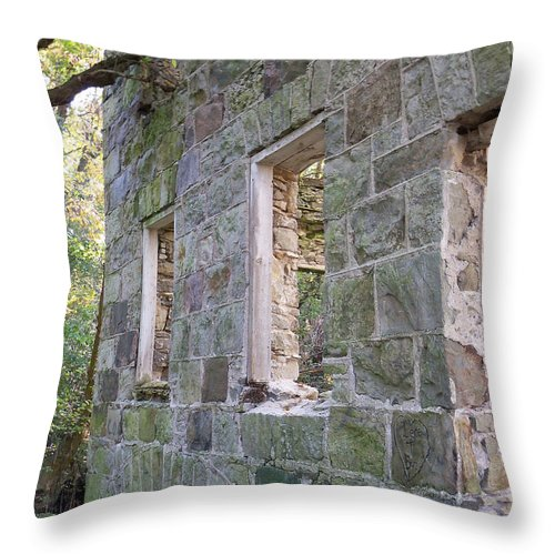 Building Throw Pillow featuring the photograph Standing Strong by Corinne Elizabeth Cowherd