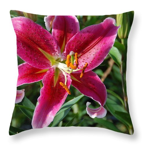 Flower Throw Pillow featuring the photograph Star by Aimee L Maher ALM GALLERY