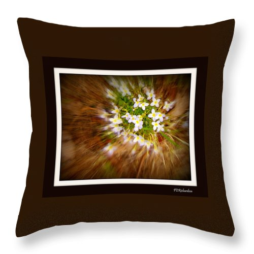 Burst Throw Pillow featuring the photograph Star Burst by Priscilla Richardson