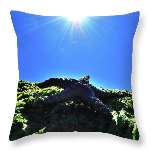 Abstract Throw Pillow featuring the photograph Stars From Below by The Artist Project