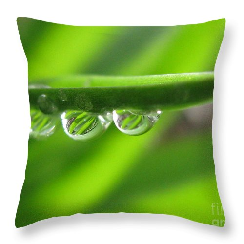 Flower Throw Pillow featuring the photograph Stationary by Tina Marie