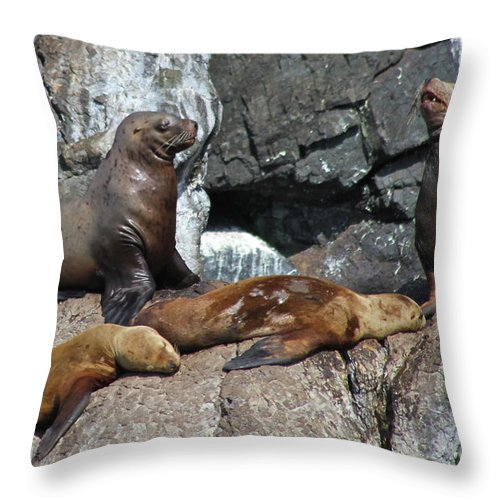 Sea Life Throw Pillow featuring the photograph Steller by Rick Monyahan