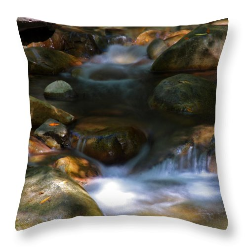 Water Throw Pillow featuring the photograph Stream by Leonard Sharp