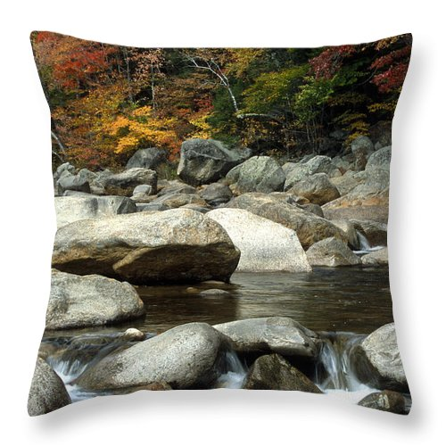 New Hampshire Throw Pillow featuring the photograph Streamside Color by Sandra Bronstein