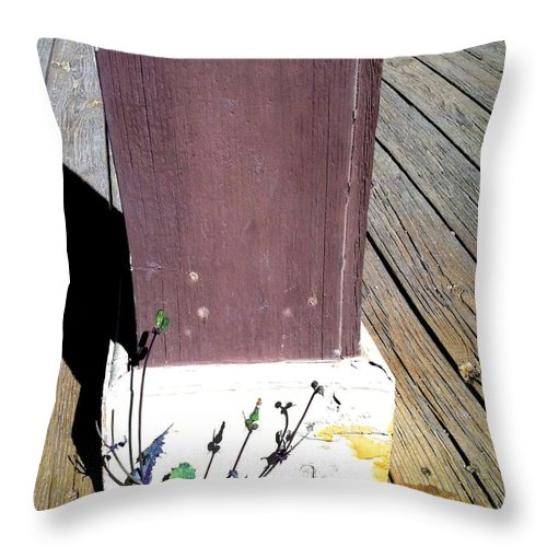 Tombstone Throw Pillow featuring the photograph Streets Of Tombstone 16 by Marlene Burns