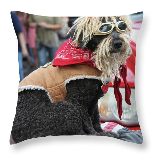 Poodle Throw Pillow featuring the photograph Streetwise by Kristin Elmquist