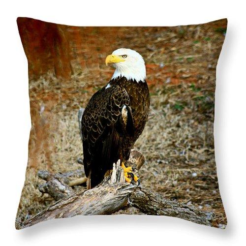 Eagle Throw Pillow featuring the photograph Strong Survivor by Toni Hopper