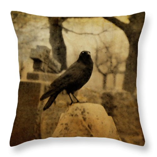 Raven Throw Pillow featuring the photograph Study Of The Surly Raven by Gothicrow Images