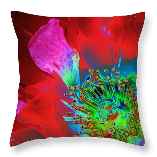 Rose Throw Pillow featuring the photograph Stylized Flower Center by Phyllis Denton