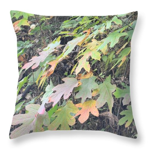 Subtle Transformations Throw Pillow featuring the photograph Subtle Transformations by Maria Urso