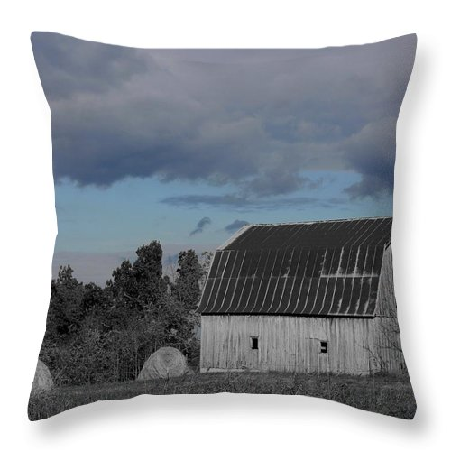 Barn Throw Pillow featuring the photograph Such Is Life by Betty Northcutt