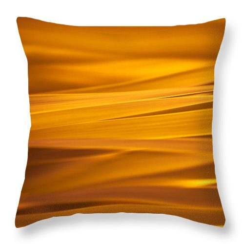 Orange Throw Pillow featuring the photograph Summer Evening by Robin Konarz