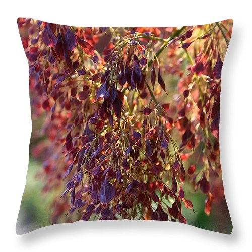 Outdoors Throw Pillow featuring the photograph Summer Highlights by Susan Herber