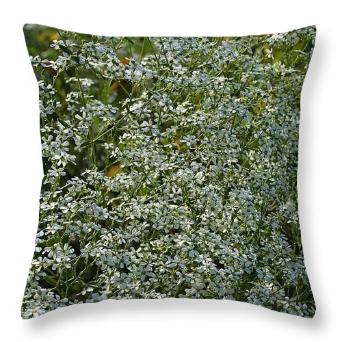 Outdoors Throw Pillow featuring the photograph Summer Lace by Susan Herber