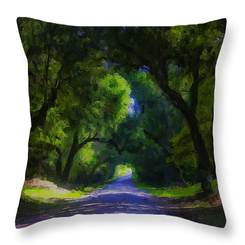 Ron Jones Throw Pillow featuring the digital art Summer Lane by Ron Jones