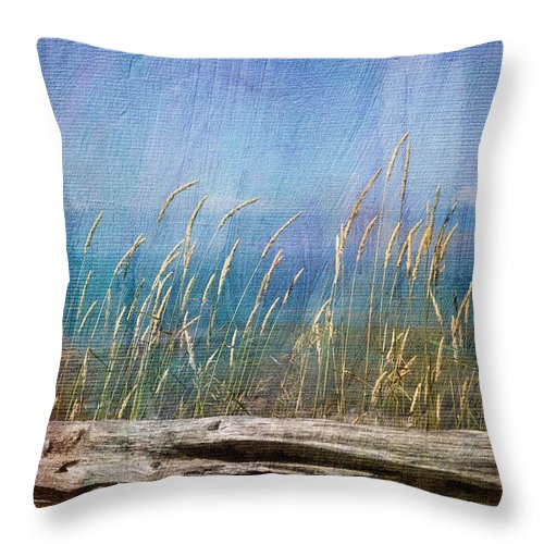 Summer Throw Pillow featuring the photograph Summer Rendezvous by Robin Webster