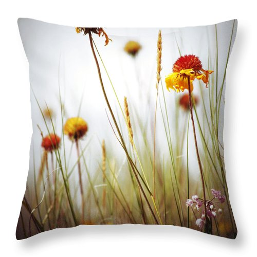 Summer Throw Pillow featuring the photograph Summer Tickle by The Artist Project
