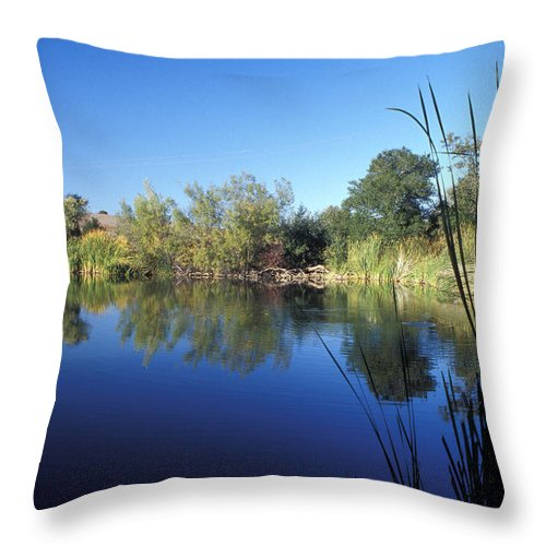 Landscape Throw Pillow featuring the photograph Summertime Reflections by Kathy Yates