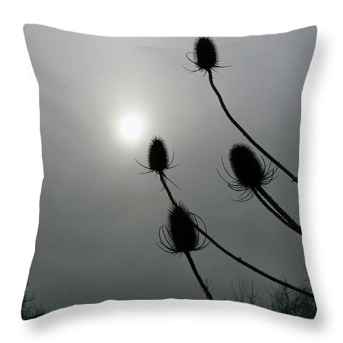 Sun Throw Pillow featuring the photograph Sun Worshipers by Pamela Patch