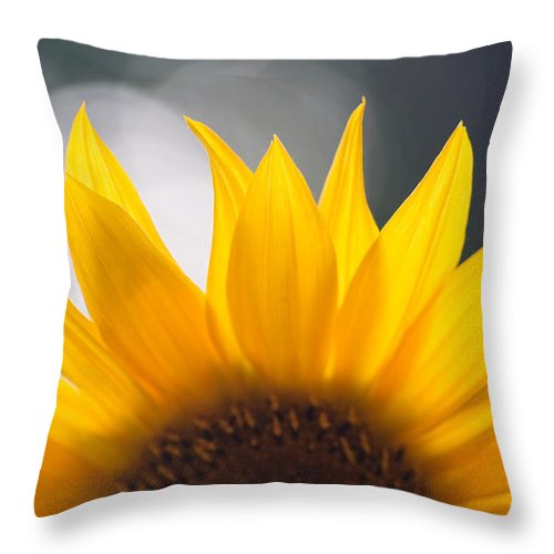 Flower Throw Pillow featuring the photograph Sunflower by Kati Finell