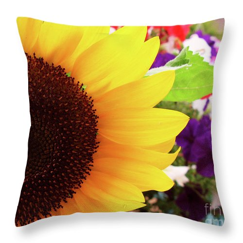 Flowers Throw Pillow featuring the photograph Sunflower Macro by Jack Schultz